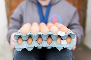 Caring for Life - Poultry Project